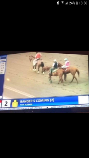 If Carlsberg did horse racing. They are Coming. 😂😂